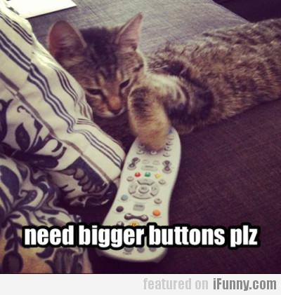 Need Bigger Buttons Pls