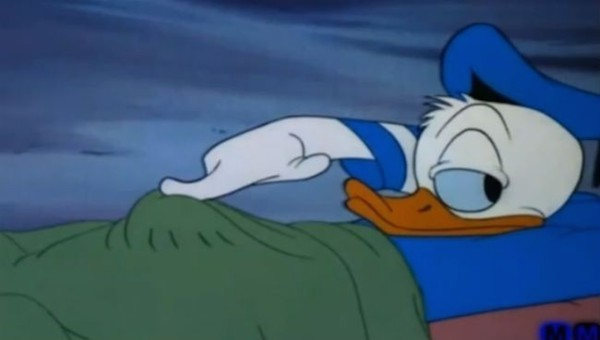 13.) Donald you shouldn't be touching that.